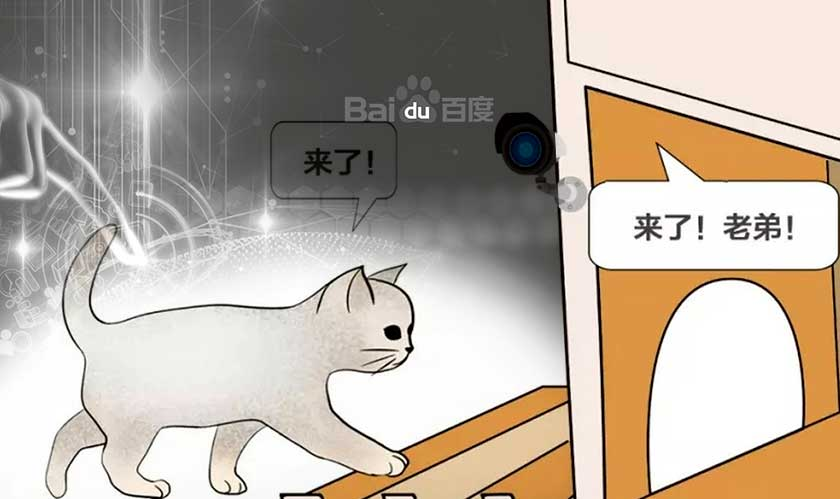 baidu ai cat shelter