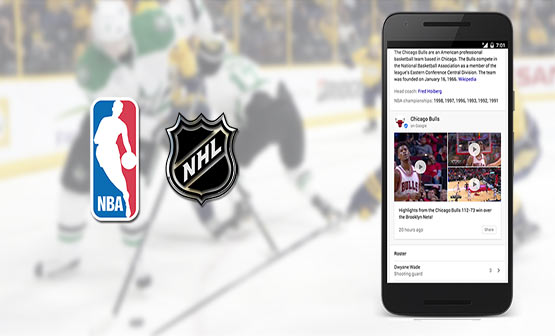 now you can find nba and nhl updates directly through google search