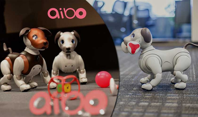 sony aibo patrol security feature